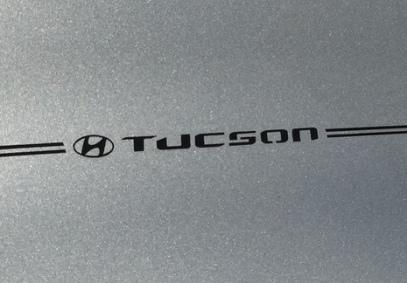 Hyundai Elantra Sante Fe Accent Tucson Sonata vinyl pinstripe emblem stripe logo decal graphic