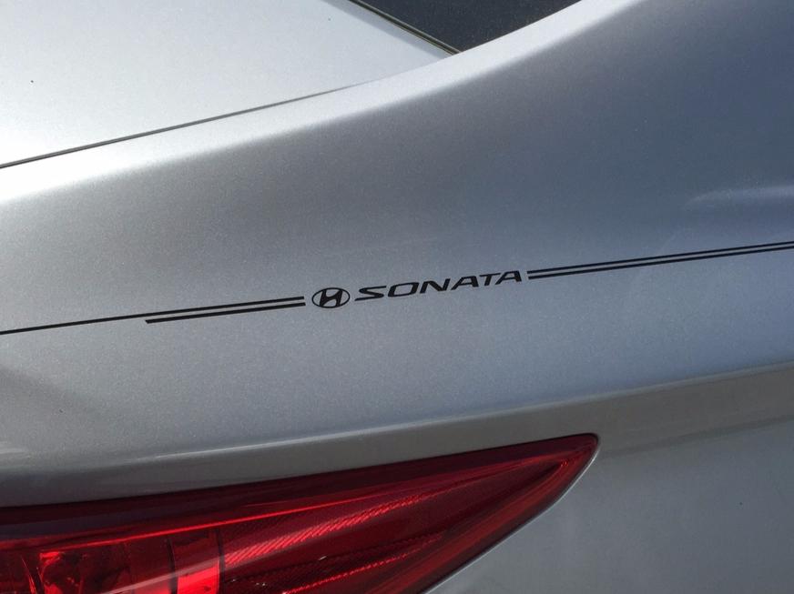Violassi Striping Company Hyundai Sonata Logo Emblem